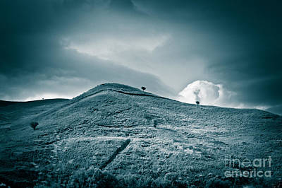 Photograph - Moody Hill by Silvia Ganora