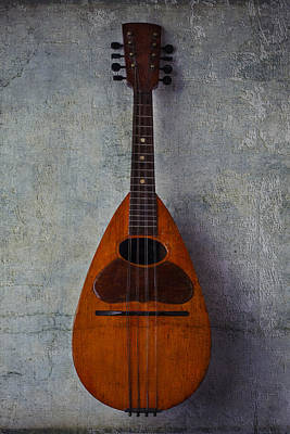 Beaten Up Photograph - Moody Mandolin by Garry Gay