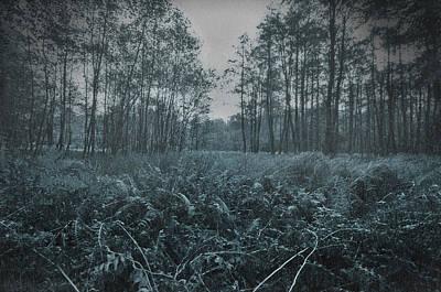 Photograph - Moody Weather by Henrik Petersen