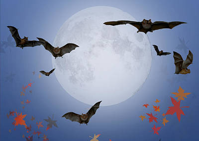 Moon And Bats Art Print by Melissa A Benson