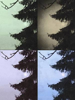Art Print featuring the photograph Moon And Tree by Photographic Arts And Design Studio