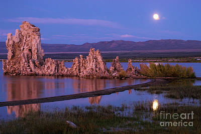 Photograph - Moon At Mono by Adam Jewell