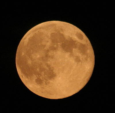 Photograph - Moon Closeup by Carolyn Reinhart