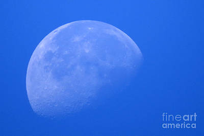 Photograph - Moon Craters by Mary Mikawoz
