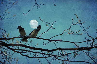 Photograph - Moon Dance by Emily Stauring