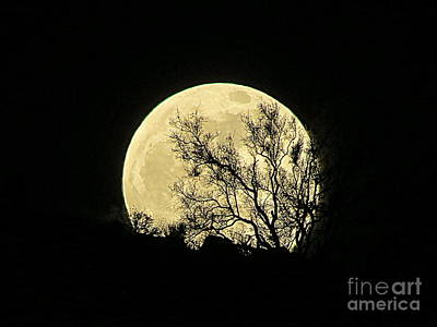 Photograph - Moon by Mistys DesertSerenity