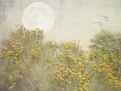 Photograph - Moon Garden by Grace Dillon