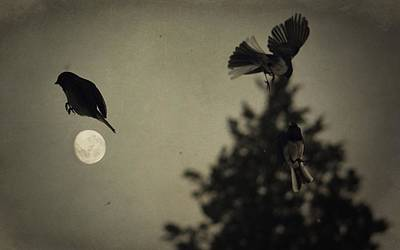 Photograph - Moon In Flight 10 by Emily Stauring