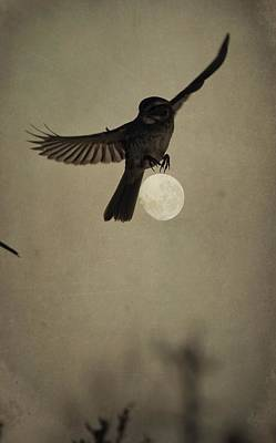 Photograph - Moon In Flight 2 by Emily Stauring