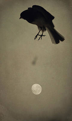 Photograph - Moon In Flight 3 by Emily Stauring
