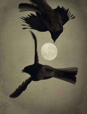 Photograph - Moon In Flight 7 by Emily Stauring