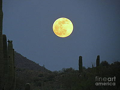 Photograph - Moon In May by Mistys DesertSerenity