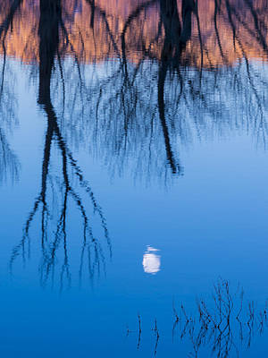 Photograph - Moon In The Water by Joe Doherty