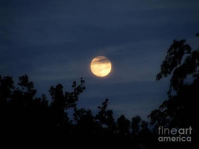 Photograph - Moon Light II by Scott B Bennett