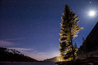 Moon Light Over Tenaya Lake Art Print by Cat Connor