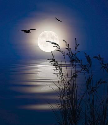 Moon Light Silhouettes Art Print