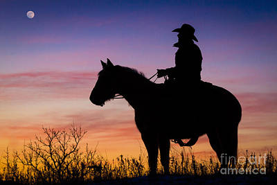 Moon On The Range Art Print by Inge Johnsson