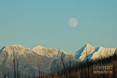 Photograph - Moon Over Glacier Np by Cindy Murphy - NightVisions