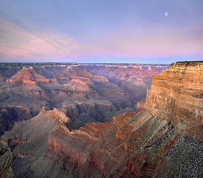 Moon Over Grand Canyon National Park Art Print by Tim Fitzharris