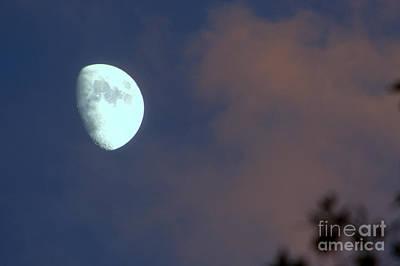 Photograph - Moon Over Havasu Canyon by Jim McCain