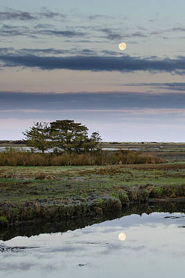 Moon Over Marsh Art Print