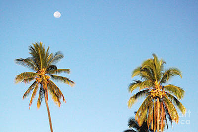 Moon Over Molokai Art Print