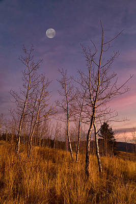 Photograph - Moon Over Shadow Mountain by Kathleen Bishop