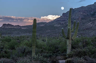 Photograph - Moon Over Superstition Mountain by Tam Ryan