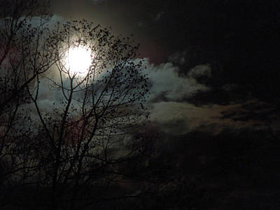 Art Print featuring the photograph Moon Rise by Pete Trenholm