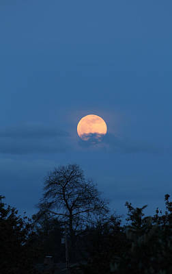 Photograph - Moon Rising by E Faithe Lester