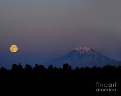 Photograph - Moon Rising by Jack Moskovita