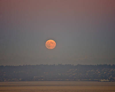 Photograph - Moon Rising by Ronda Broatch