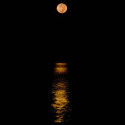 Photograph - Moon Set Anna Maria Island by Rolf Bertram