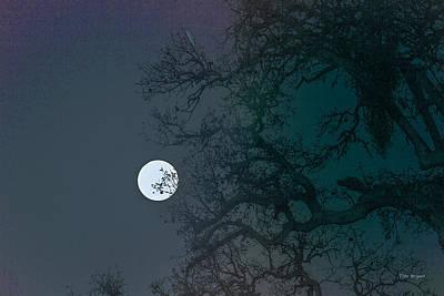 Photograph - Moon Set by Tim Bryan