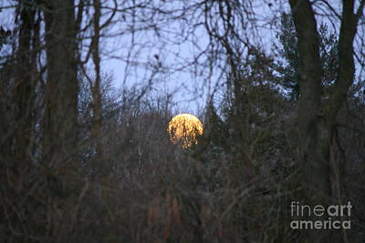 Horizon Photograph - Moon Shadow by Neal Eslinger