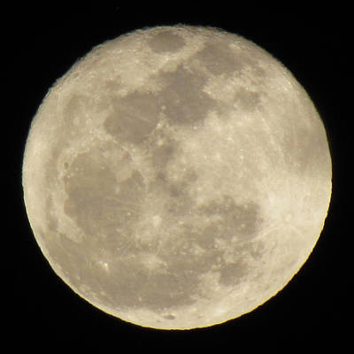 Moon Shine Original