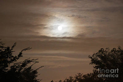 Photograph - Moon Shine by Karen Adams