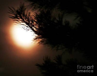 Photograph - Moon Shines Bright by Al Fritz