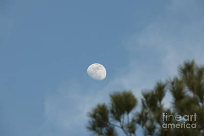 Photograph - Moon Slice by Dale Powell