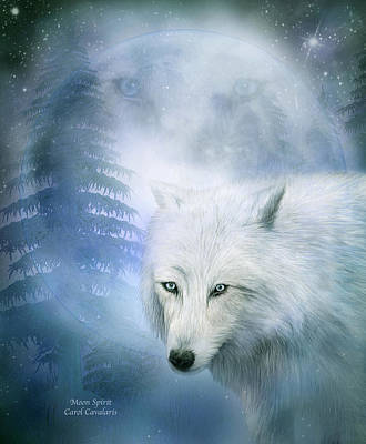 Moon Spirit 1-white Wolf - Blue  Art Print by Carol Cavalaris