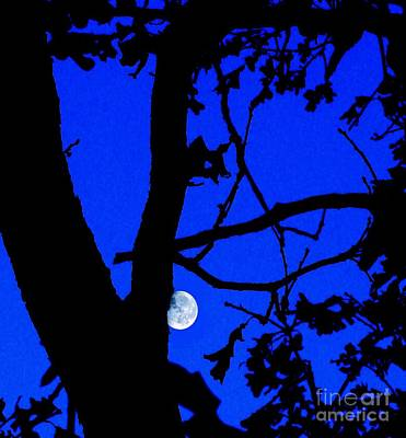 Art Print featuring the photograph Moon Through Trees 2 by Janette Boyd
