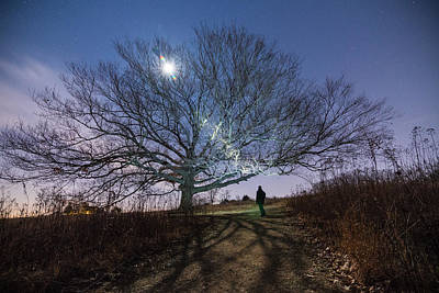 Bare Trees Photograph - Moon Tree by Kristopher Schoenleber