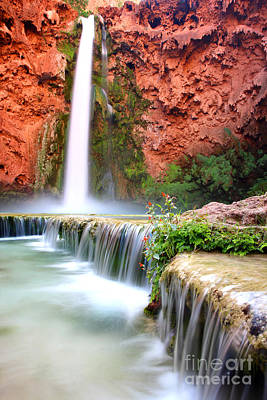 Mooney Falls Art Print