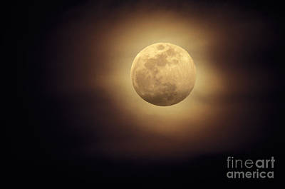 Moonglow Photograph - Moonglow by Ron Sanford