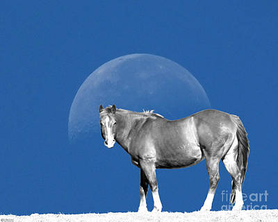 Digital Art - Moonhorse by Lizi Beard-Ward