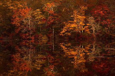Moonlight Autumn Art Print by Jonathan Steele