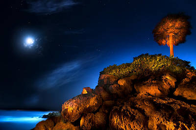 Beauty Mark Photograph - Moonlight Cove by Mark Andrew Thomas