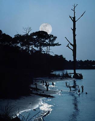 Photograph - Moonlight by David and Carol Kelly