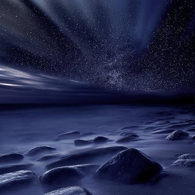 Moonlight Art Print by Jorge Maia