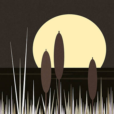 Moonlight On Loon Lake Art Print